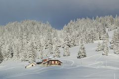 House and fir tree in winter, Jura mountain, Switzerland Royalty Free Stock Photography