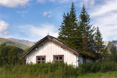 House with fir trees on roof Stock Image