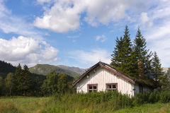 house with fir trees on roof Royalty Free Stock Image