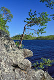 house floden för republiken karelia för den karelian liggandenaturen den norr Pongoma flod, norr Karelia, Ryssland Arkivbild