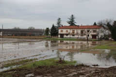 House and Flooded Field. A field of seedlings lies flooded following heavy and prolonged winter storms near the Italian town of Aquilea, 12th December 2008 royalty free stock images