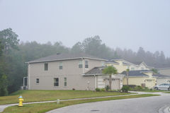 House in florida with fog and a tree. Stock Image