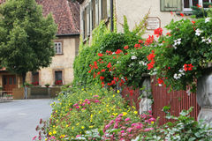 House with flowered fence Stock Images