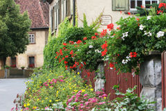 House with flowered fence Royalty Free Stock Photos