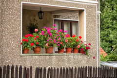 House with flowers Stock Photography