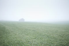 House in foggy field Royalty Free Stock Images