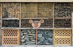 Free House For Insects. A Box Made Of Bark, Straw And Stones. Bricks, Cones And Bamboo For The Insect To Settle There. Home Stock Images - 220987054