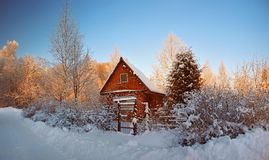 House in forest. Winter snow Royalty Free Stock Photography