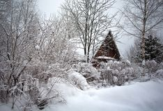 House in forest. Winter village Stock Photos