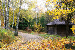 House in a forest - Autumn Landscape. Beautiful vivid nature Royalty Free Stock Photos