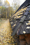 House in a forest - Autumn Landscape. Beautiful vivid nature Stock Photo