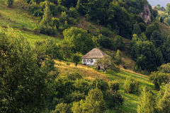 House in the forest. House in a Carpathian forest Royalty Free Stock Photo