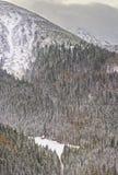 House in the Forest on Kasprowy Wierch of Zakopane in Tatras in Royalty Free Stock Photography
