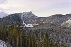 House  in the Forest in Kasprowy Wierch of Zakopane in Tatras in Stock Photo