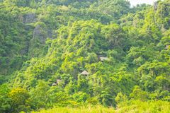 House on forest for transporting tourists to Phong Nha cave, Phong Nha - Ke Bang national park, Viet Nam. stock photography