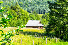 House by the forest Stock Images