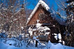 House in forest.winter. berries sun Royalty Free Stock Photos