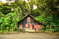 House in forrest Royalty Free Stock Photo