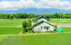 House in the fram. House in the farm  japan Stock Images