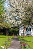 A  house with a garden Stock Photos