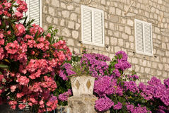 House garden background. Mediterranean stoned house with flowers and garden in bloom, travel Montenegro Royalty Free Stock Photos
