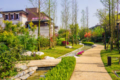 House garden Stock Photography
