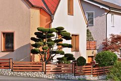 House with garden Stock Image