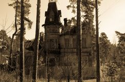 House with ghost or just old wooden abandoned house surrounded by pine trees Stock Photos