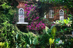 House in Goa. House with two windows and balconies with many plants and magenta flowers around in Goa, India stock photos