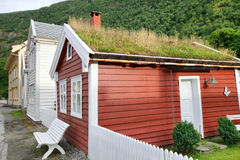 House with grass on the roof at Laerdal. Norway Stock Photos