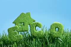 House from grass and word eco Royalty Free Stock Image