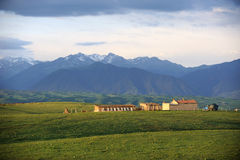 House in the grassland Stock Photography