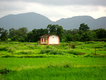 House in green countryside Royalty Free Stock Photos