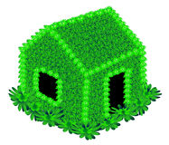 House with green flowers. On white background vector illustration