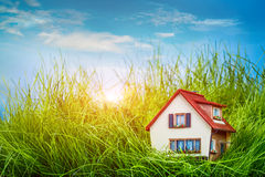 House on the green grass Stock Photography