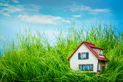 House on the green grass Stock Photos