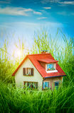 House on the green grass Stock Image