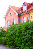 House and green plants Royalty Free Stock Image