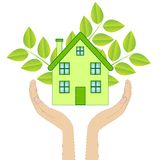 House with green plants in hands on a white background Stock Image