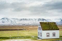 A house with a green roof Stock Images