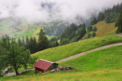 House in Grindelwald Royalty Free Stock Photos