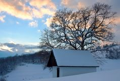 House in a hamlet. Winter landscape with a tree and house Stock Photo