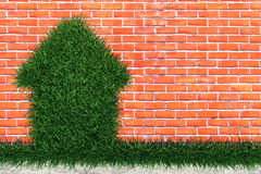 House of Herbs. House from the grass on a brick wall Royalty Free Stock Photos