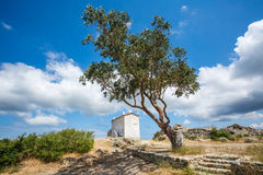 The house on the hill at Baccialu in Corsica Stock Image