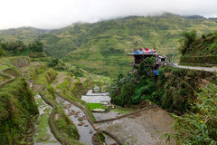 A house on the hill with rice fields in Banaue, Philippines Royalty Free Stock Photo