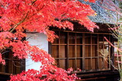 House in historic village ,Japan. House in historic village Shirakawa-go, Gifu prefecture, Japan Stock Images