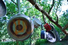 House-hold objects hanging on a Tree. In a forest, probably a contemporary artist trying to create a new concept Royalty Free Stock Images