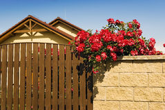 House home flowers wall stock images
