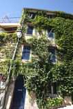 House of Hyeres covered by plants Royalty Free Stock Image