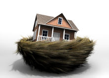 House In Nest Royalty Free Stock Images